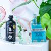Matterhorn Gin & Tonic Pack 500ml   Aperoshop